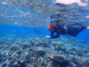 SPREP and Reef Ecologic support Coral Reef Management for Pacific islands