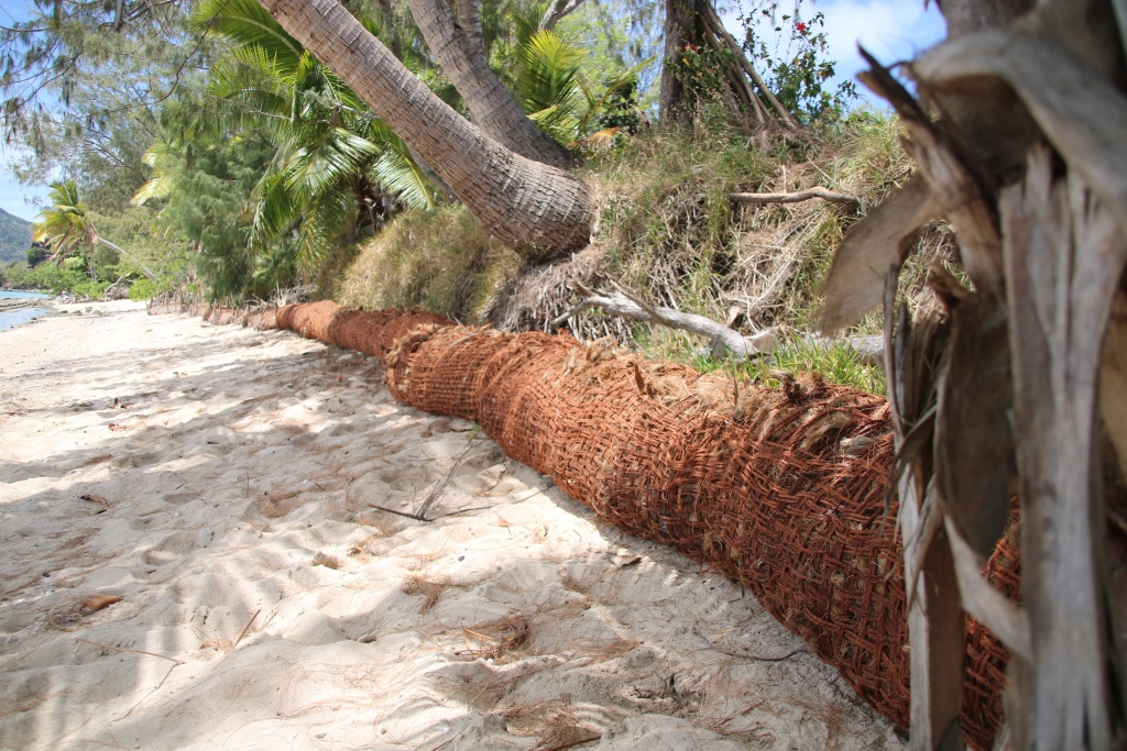 20 metres of Nacula villages coastline Fiji embedded with 5 coir logs an example of nature-based solution. The activity was supported by WWF-Pacific. Photo - WWF-Pacific- Ravai Vafoou