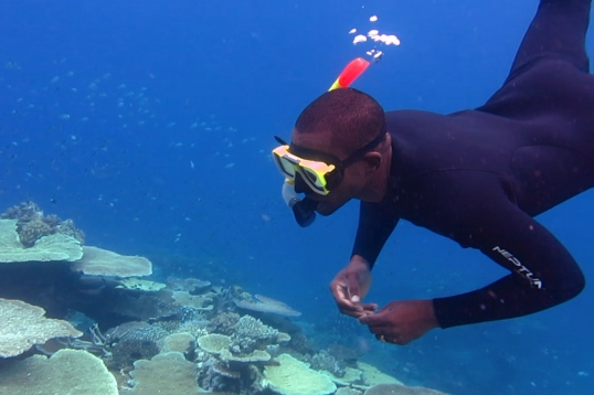 AA-fellows-snorkelling-on-the-GBR 1