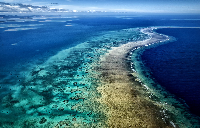 Cakaulevu reef Fiji Stuart Chape copy