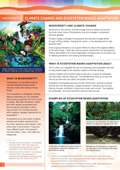 Pages from Factsheet 5-hi