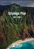 Pages from strategic-plan-2017-2026