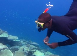Global gathering to tackle coral reef crisis