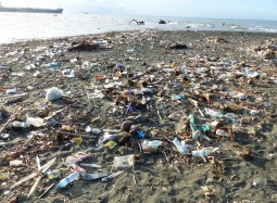 Plastic Ocean or Pacific Ocean?