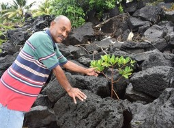 Ecosystem-based Adaptation to take the spotlight at the second Pacific Climate Change Conference