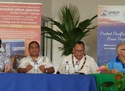 27SM Niue News: Pacific Environment Forum calls for a balanced approach to whale watching in Pacific islands