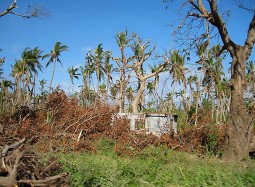 Severe Tropical Cyclone Pam - Post Disaster Needs Assessment
