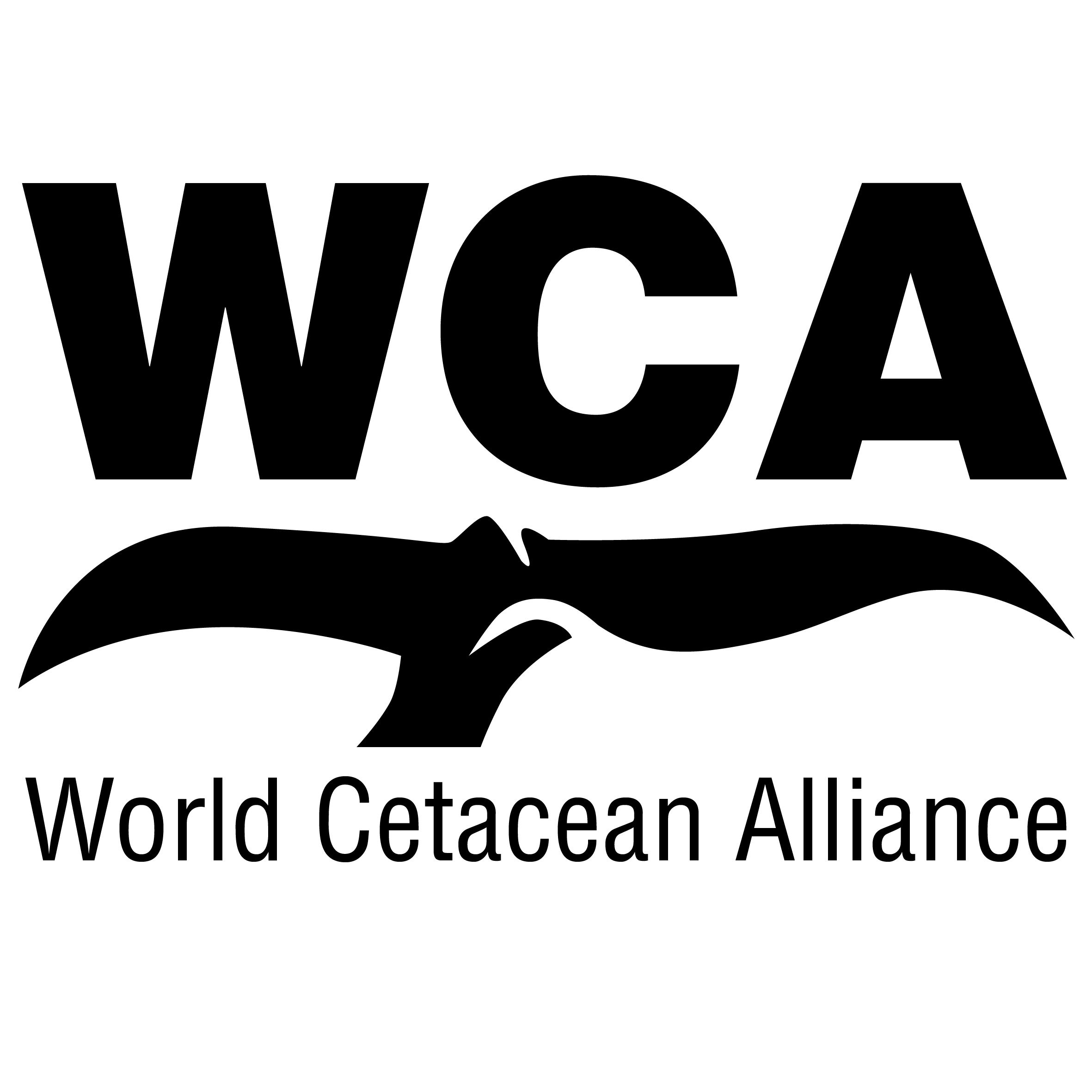 WCA black transparent
