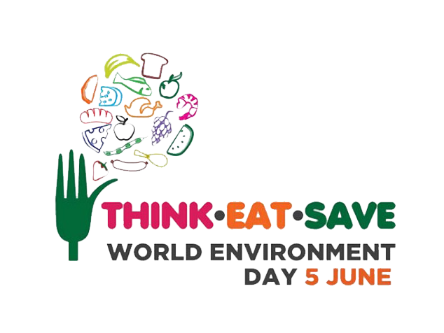world-env-day-2013
