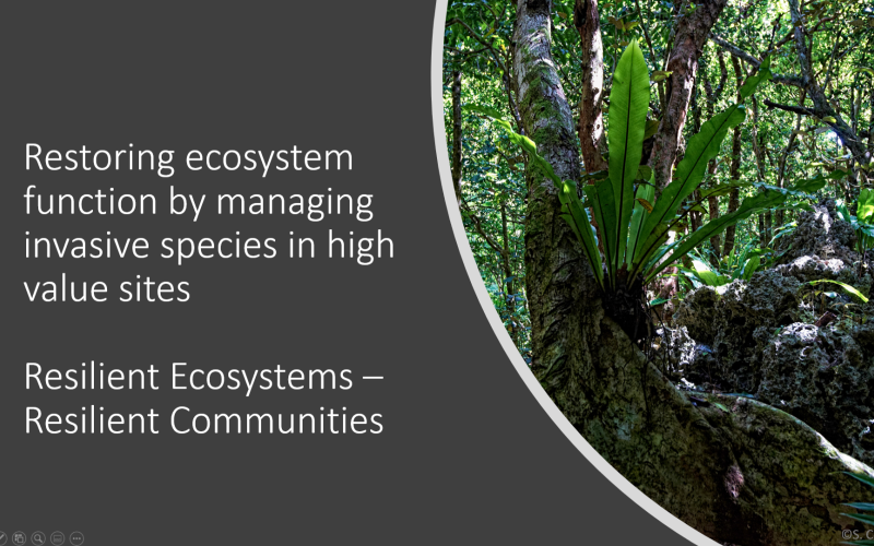 Resilient Ecosystems Resilient Communities