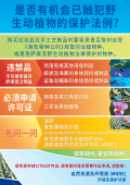 think-before-you-leave-samoa-chinese-version