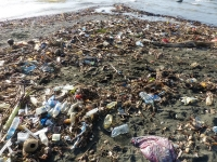 Marine debris in the Pacific